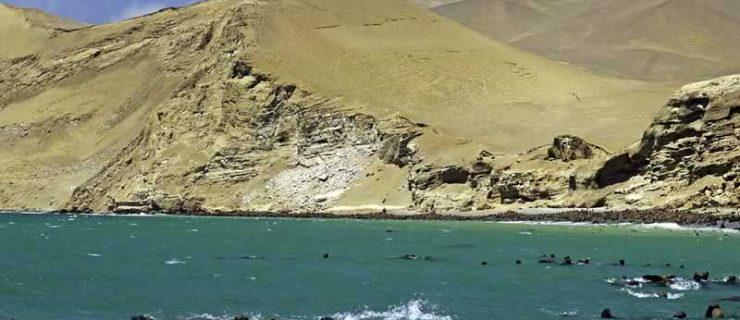 paracas-nazca
